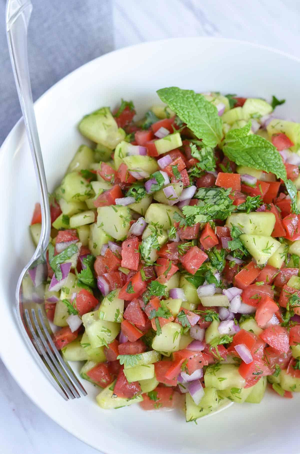 close up click of salad shirazi